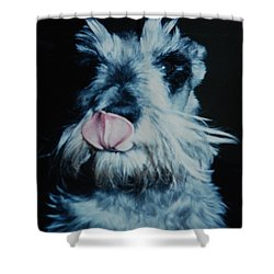 Sam The Fat Cow Shower Curtain by Rob Hans