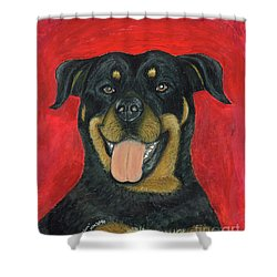 Sam The Rottewieler Shower Curtain by Ania M Milo