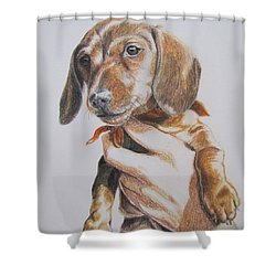 Sambo Shower Curtain by Karen Ilari
