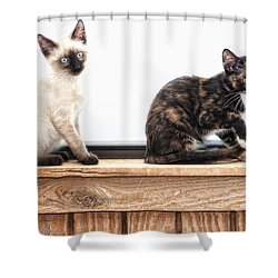 Shower Curtain featuring the photograph Sammi And Micki by Karen Slagle