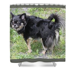 Sammie Jo 2 Shower Curtain