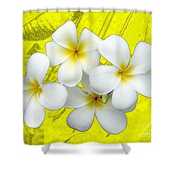 Samoan Frangrapani Shower Curtain
