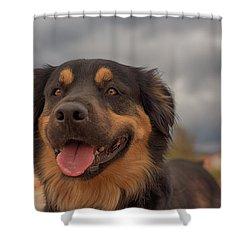 Samson Shower Curtain