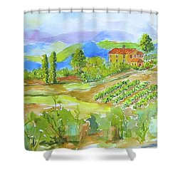 Vineyard At San Gimignano Shower Curtain