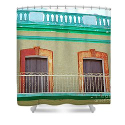 San Jose Del Cabo Doors 11 Shower Curtain by Randall Weidner
