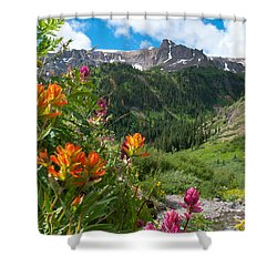 Shower Curtain featuring the photograph San Juans Indian Paintbrush Landscape by Cascade Colors