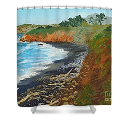 Shower Curtain featuring the painting San Simeon Ca Coast by Katherine Young-Beck