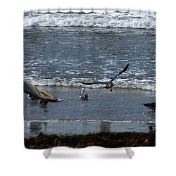 Sand And Surf Shower Curtain by Linda Shafer