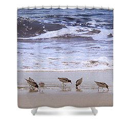 Sand Dancers Shower Curtain