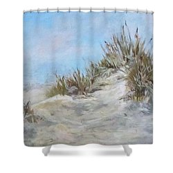 Sand Dunes And Salty Air Shower Curtain