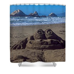 Sand Frog  Shower Curtain by Garry Gay