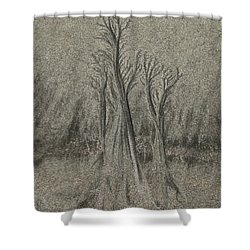 Sand Reel Shower Curtain