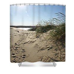 Sand Tracks Shower Curtain by Tara Lynn