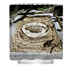 Shower Curtain featuring the photograph Sand Turtle Print by Francesca Mackenney