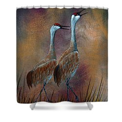 Sandhill Crane Duet Shower Curtain by Dee Carpenter