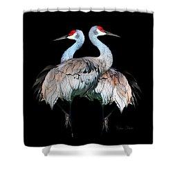 Sandhill Crane Mirror Image Shower Curtain