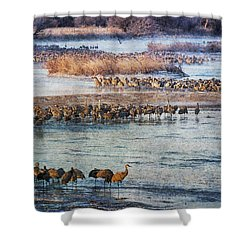 Sandhill Crane Platte River - Textured Shower Curtain