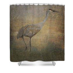 Sandhill Crane Watercolor Shower Curtain by Janice Rae Pariza