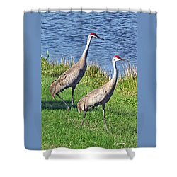 Sandhill Pair Shower Curtain