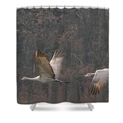 Shower Curtain featuring the photograph Sandhills In Flight by Shari Jardina