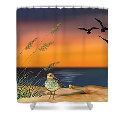 Sandpiper For Angel Shower Curtain