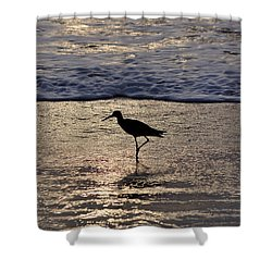 Sandpiper On A Golden Beach Shower Curtain by Kenneth Albin