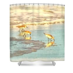 Sandpipers Along The Shoreline Shower Curtain by Betsy Foster Breen