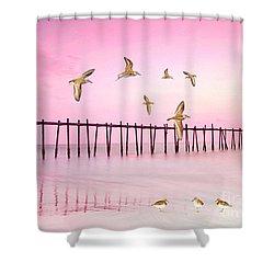 Sandpiper Sunset Shower Curtain