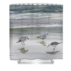 Sandpipers Shower Curtain