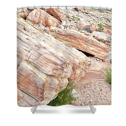 Shower Curtain featuring the photograph Sandstone Along Park Road In Valley Of Fire by Ray Mathis