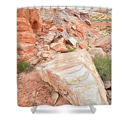 Shower Curtain featuring the photograph Sandstone Arrowhead In Valley Of Fire by Ray Mathis