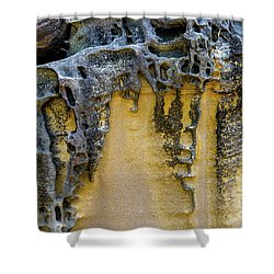 Shower Curtain featuring the photograph Sandstone Detail Syd01 by Werner Padarin