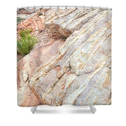 Shower Curtain featuring the photograph Sandstone Feet In Valley Of Fire by Ray Mathis