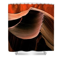 Sandstone Melody Shower Curtain by Mike  Dawson