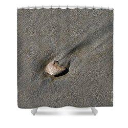 Sandstone Shower Curtain by Victoria Harrington