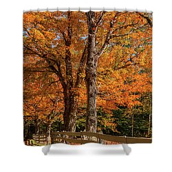 Sandwich Autumn Shower Curtain