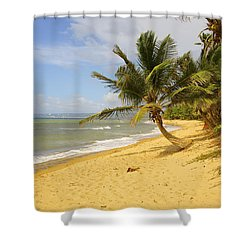 Sandy Beach II Shower Curtain