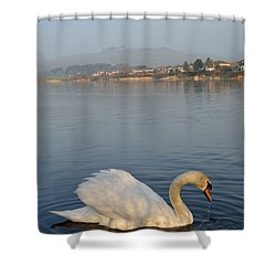 Sandy Water Park 4 Shower Curtain