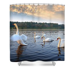 Sandy Water Park 5 Shower Curtain
