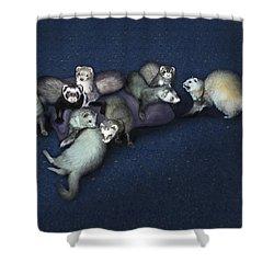 Sandy's Ferrets Shower Curtain by Barbara Hymer