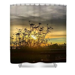 San Francisco Skyline At Sunrise Shower Curtain