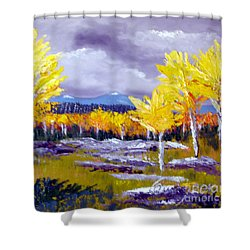 Santa Fe Aspens Series 4 Of 8 Shower Curtain