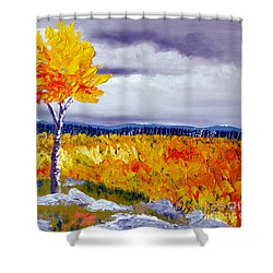 Santa Fe Aspens Series 7 Of 8 Shower Curtain
