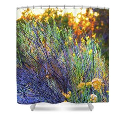 Santa Fe Beauty Shower Curtain by Stephen Anderson