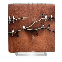 Shower Curtain featuring the photograph Santa Fe Birds by Kenneth Campbell