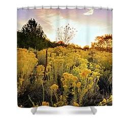 Santa Fe Magic Shower Curtain by Stephen Anderson