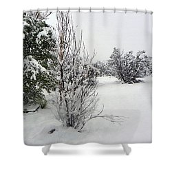 Santa Fe Snowstorm 2017 Shower Curtain
