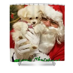 Shower Curtain featuring the painting Santa Paws  by Darren Robinson