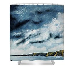 Santa Rosa Lake 2 Shower Curtain