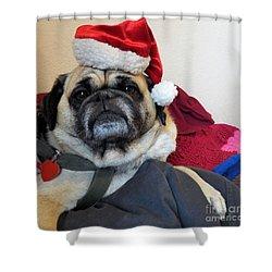 Santas Helper Shower Curtain